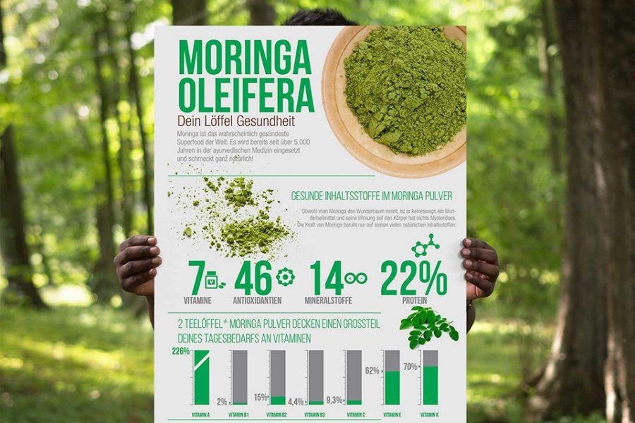 infographic_moringa